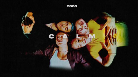 5 seconds of summer calm